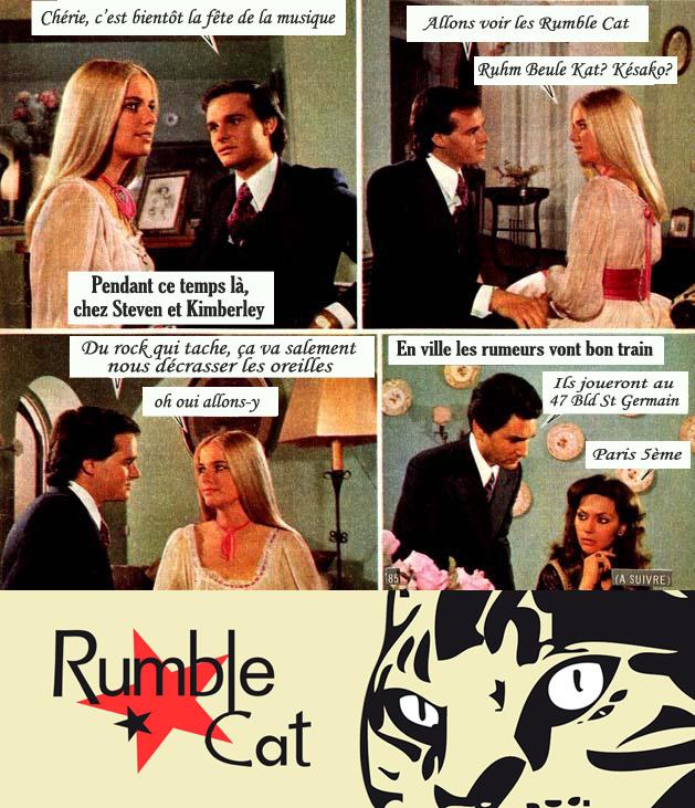 Pub-Roman-RumbleCat